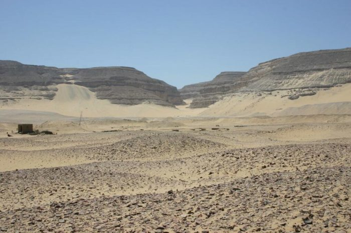 The kings of the early dynasty were buried in Umm el-Qab at Abydos