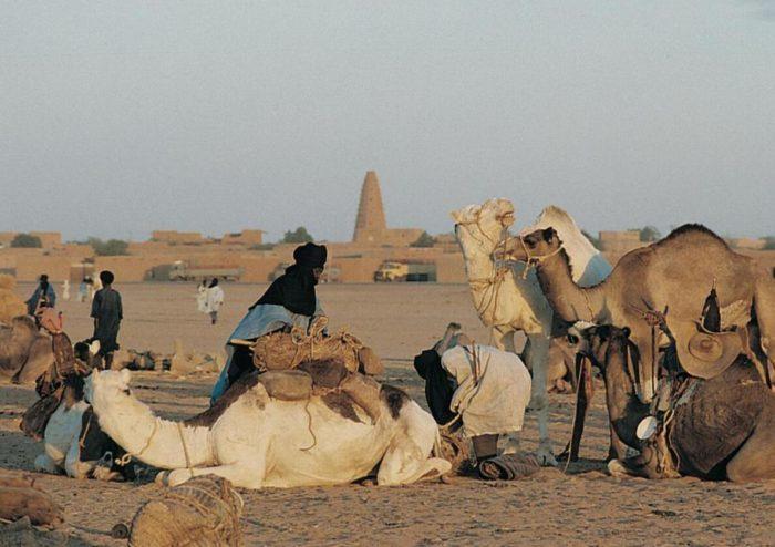 Camel market in the Agadès area