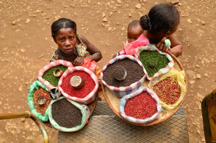 sell spices for passing