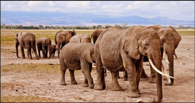 Kenya Landmarks