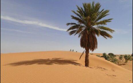 Mauritania Landmarks