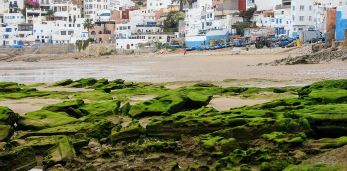5 must for tourists in Taghazout